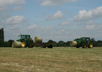 field and baling 045